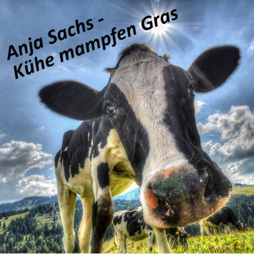 Anja Sachs - Kühe mampfen Gras